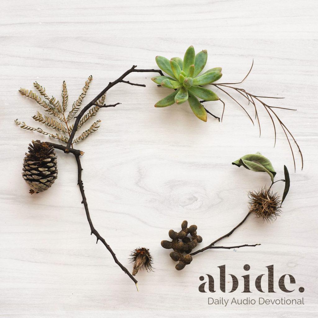 AbideSquare